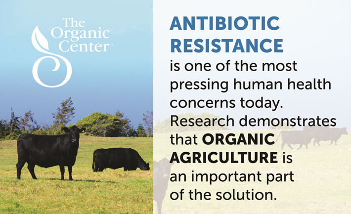 Organic practices reduce exposure to antibiotic-resistant bacteria